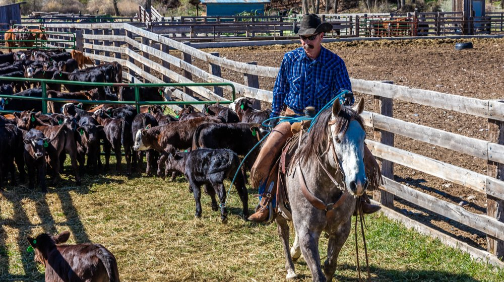 A Rancher's Greatest Challenge